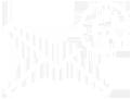 Newsletter-icon-new1